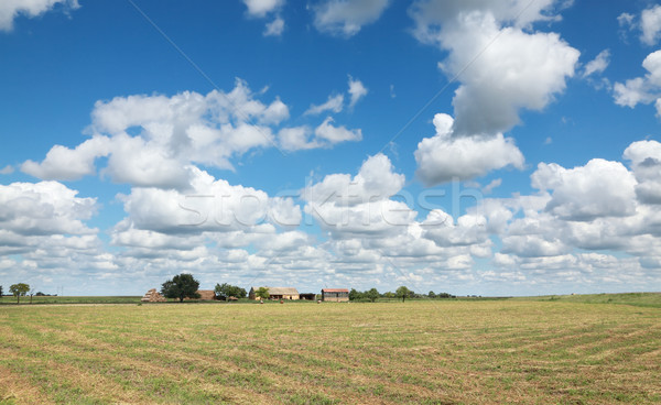 Rural landscape Stock photo © simazoran