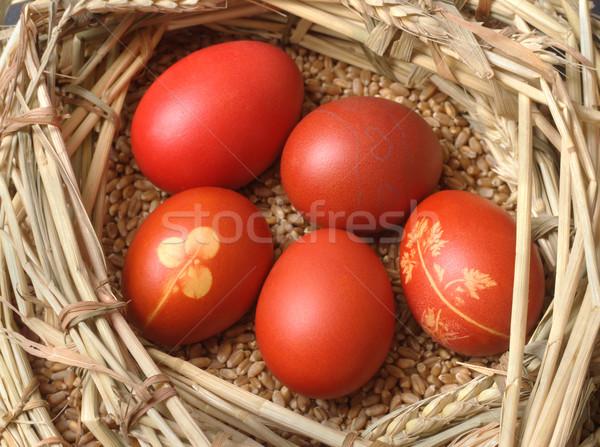 Pâques rouge œuf de Pâques blé nid Photo stock © simazoran