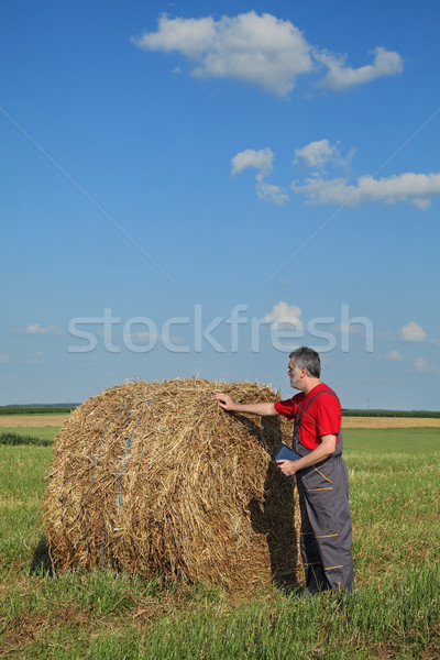 Farmer and bale of hay in field Stock photo © simazoran