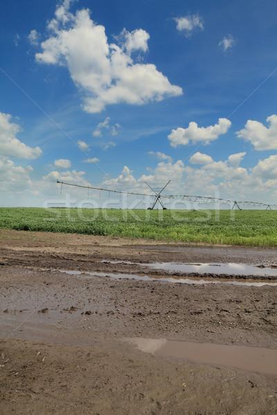 Błoto dziedzinie nawadnianie wody zaopatrywać Zdjęcia stock © simazoran