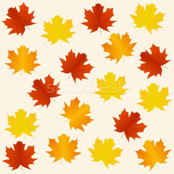 ősz végtelenített levelek fa erdő természet Stock fotó © simo988