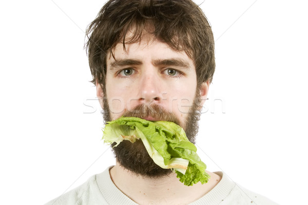 Unimpressed with Salad Stock photo © SimpleFoto
