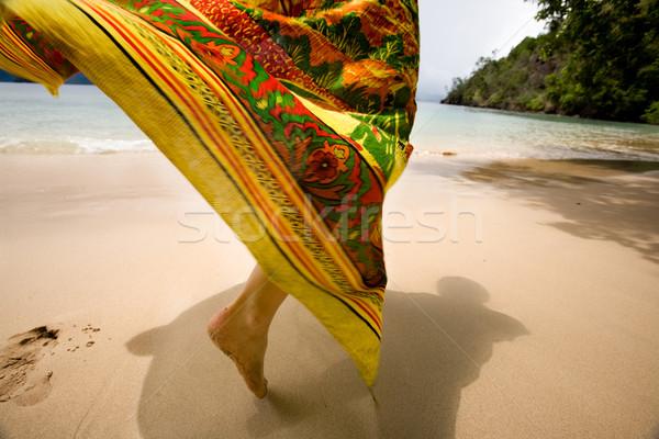 Tropicales vacaciones falda viento playa tropical Foto stock © SimpleFoto