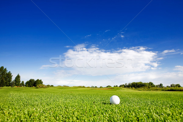 Golf Stock photo © SimpleFoto