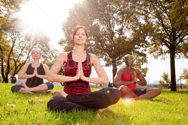 Meditáció csoportkép park nap becsillanás lány Stock fotó © SimpleFoto