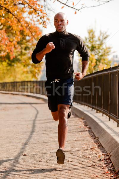 работает афроамериканец бег парка утра счастливым Сток-фото © SimpleFoto