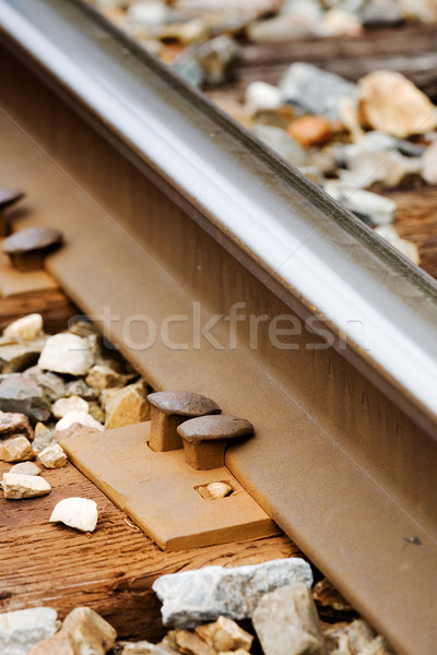 Railroad Spike Stock photo © SimpleFoto