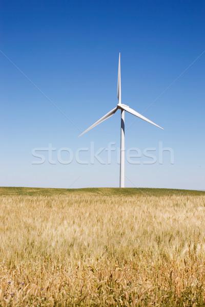 éolienne belle terre domaine vert bleu Photo stock © SimpleFoto