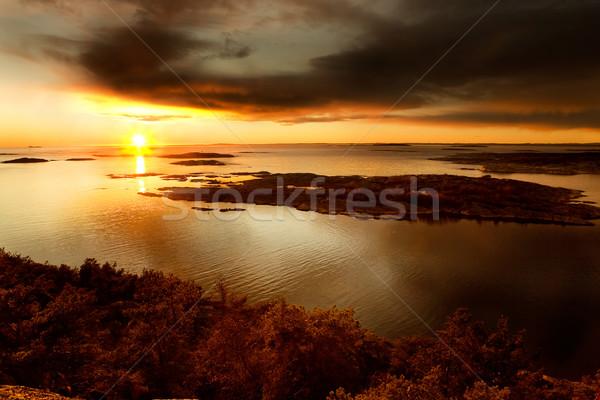 海 風景 外 オスロ ツリー ストックフォト © SimpleFoto