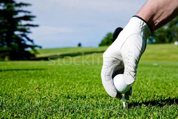Golf main golfeur up conduite gamme Photo stock © SimpleFoto