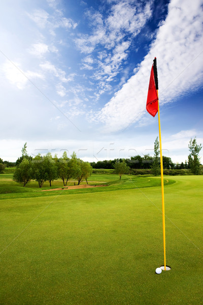 Golf Course Stock photo © SimpleFoto