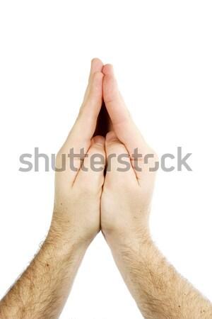 Praying Hands Isolated Stock photo © SimpleFoto