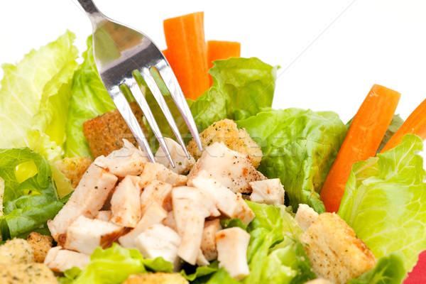 Chicken Salad Stock photo © SimpleFoto