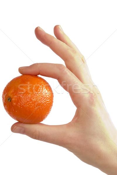 Simply Orange Stock photo © SimpleFoto
