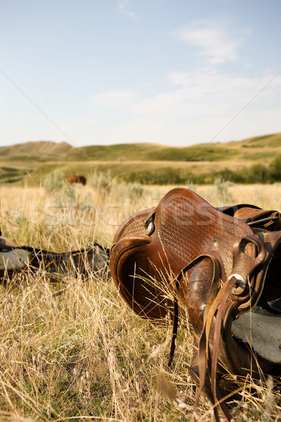 Western Saddle Stock photo © SimpleFoto