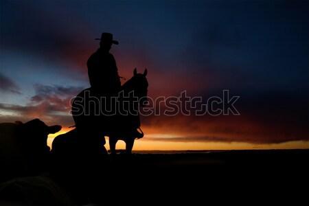 Stok fotoğraf: Kovboy · siluet · tepe · gün · batımı · gökyüzü · şehir