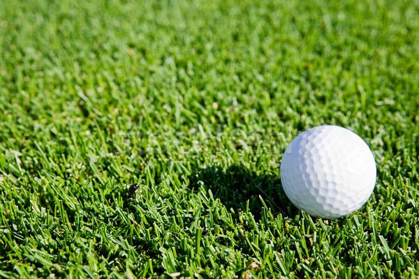 Stok fotoğraf: Golf · topu · oturma · yeşil · ot · golf · manzara · arka · plan