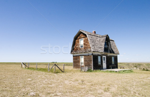 Stock fotó: Préri · ház · fű · fa · otthon · kék
