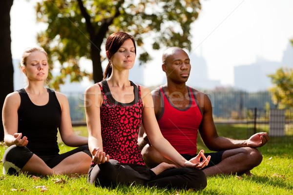 Ciudad parque yoga grupo de personas nina hierba Foto stock © SimpleFoto