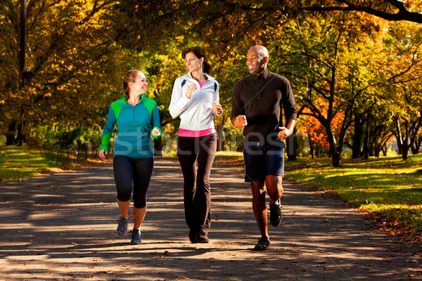 Fall Jog Park Stock photo © SimpleFoto