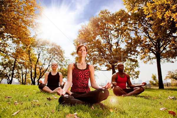 Meditáció csoportkép város park reggel nap Stock fotó © SimpleFoto