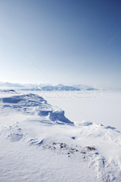Winter Snow Wilderness Stock photo © SimpleFoto