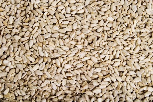 Sunflower Seeds Background Stock photo © SimpleFoto