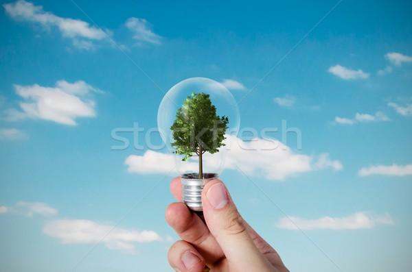 Energie-efficiëntie abstract boom lamp natuur technologie Stockfoto © simpson33
