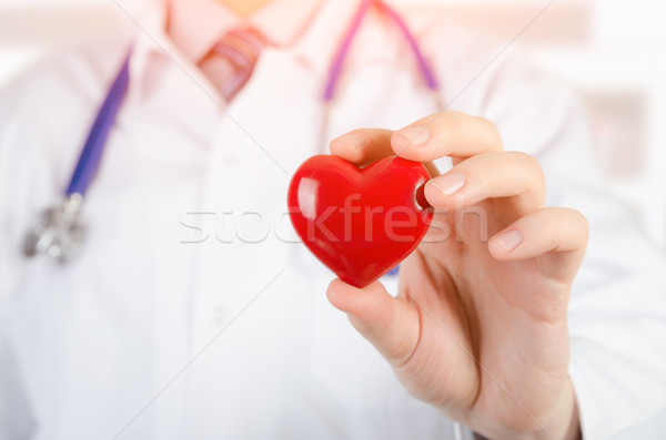 Cardiologist holding heart 3D model Stock photo © simpson33