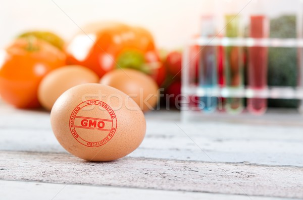 Eggs with GMO modified stamp. Genetically modified food concepti Stock photo © simpson33