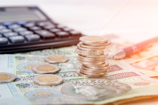 Stack of polish money business composition Stock photo © simpson33
