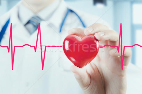кардиолог сердце 3D модель Сток-фото © simpson33