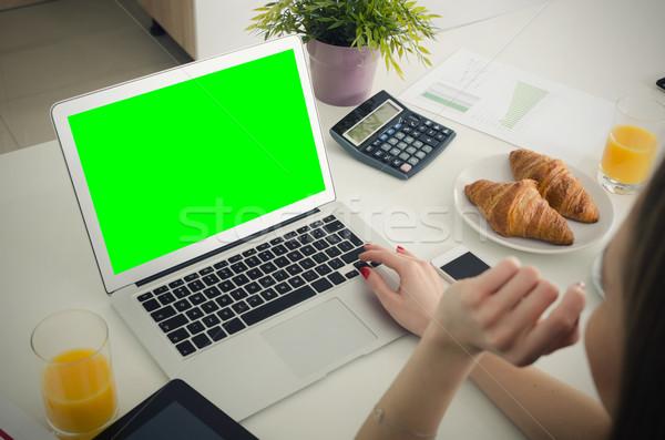 Kadın dizüstü bilgisayar kullanıyorsanız ev dizüstü bilgisayar çalışmak yeşil Stok fotoğraf © simpson33