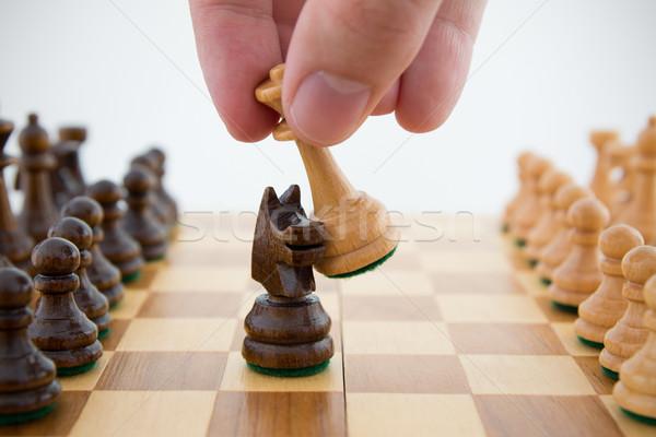Chess game. Queen captures horse Stock photo © simpson33