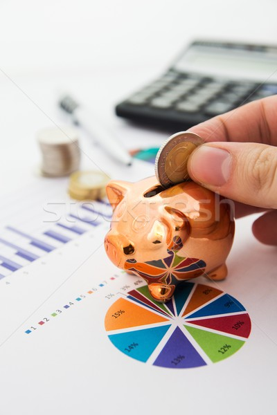 Stock photo: Coin and pig saving concept