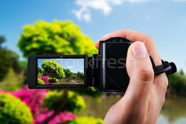 Video camera or camcorder recording flora in japanese garden  Stock photo © simpson33