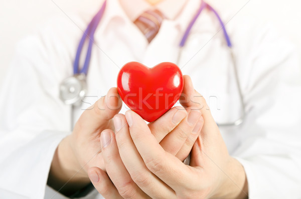 Cardiologist holding heart 3D model Stock photo © simpson33