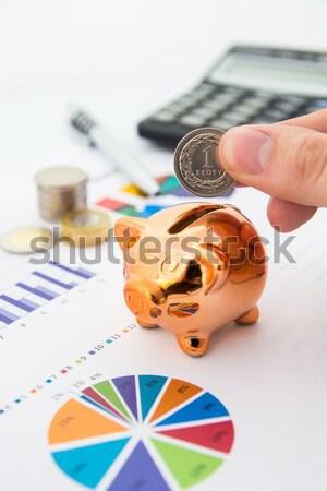 Geld spaargeld charts calculator pen varken Stockfoto © simpson33