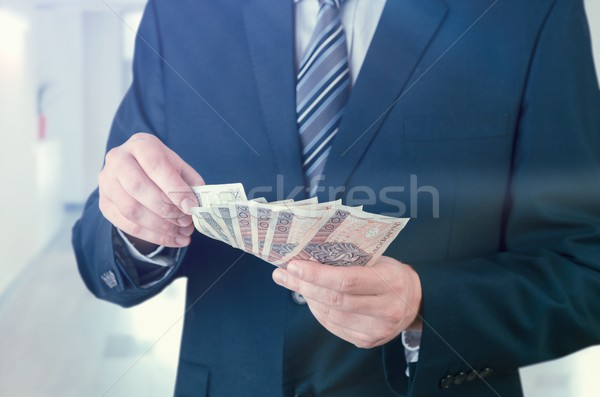 Range of Polish banknotes in businessman hand Stock photo © simpson33