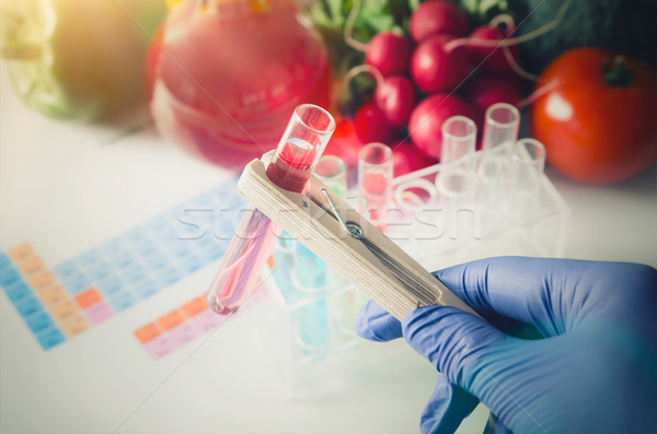 Analyst in gloves takes test tube. Genetically modified food con Stock photo © simpson33