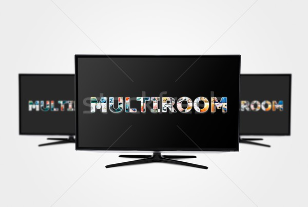 Television multi-room technology. Display with multiple masked i Stock photo © simpson33
