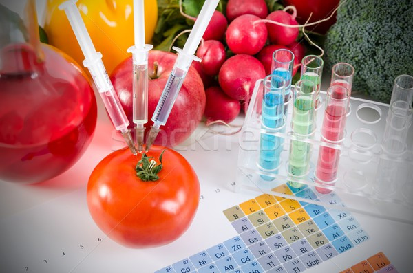 Three syringes in red tomato. Genetically modified food concept. Stock photo © simpson33