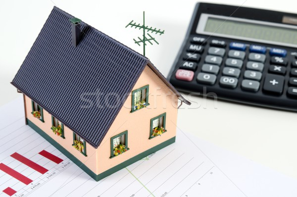 Home finances or saving for a house Stock photo © simpson33