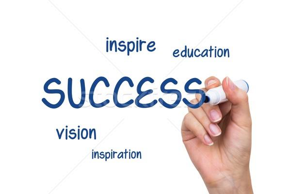 Hand schrijven succes soortgelijk inhoud Blauw Stockfoto © simpson33