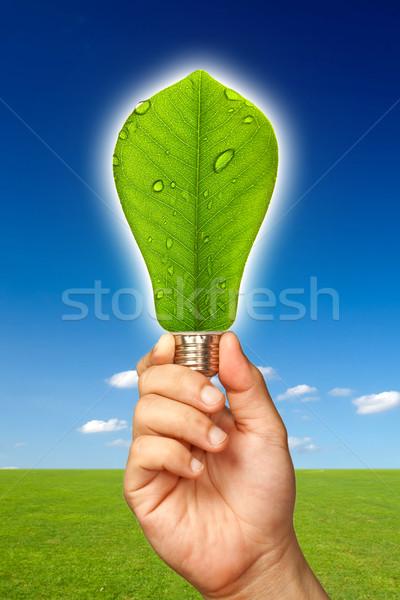 Ecological Concept Stock photo © sippakorn