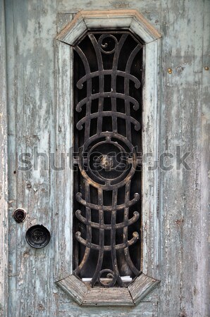 old door Stock photo © sirylok