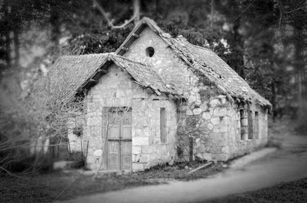 haunted house in the woods Stock photo © sirylok