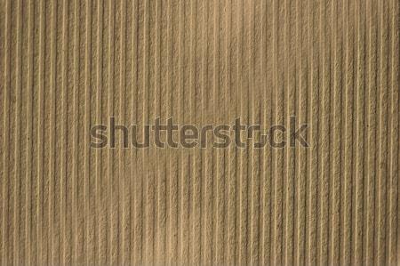 Tektury papieru pasiasty makro tekstury Zdjęcia stock © sirylok