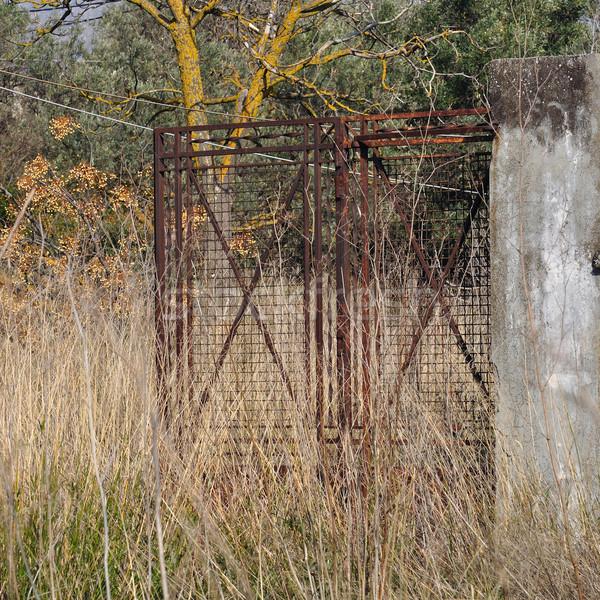 rusty gate overgrown plants Stock photo © sirylok