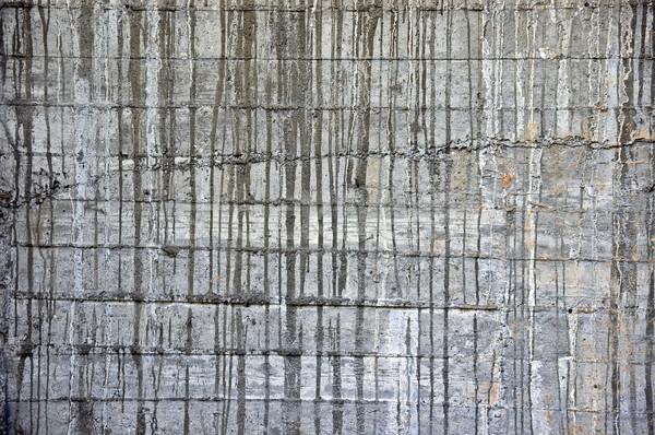 concrete texture Stock photo © sirylok